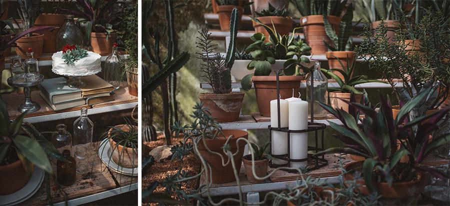 greenhouse-wedding--reception-156